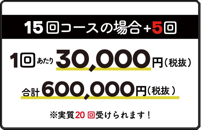15回コース1回30,000円