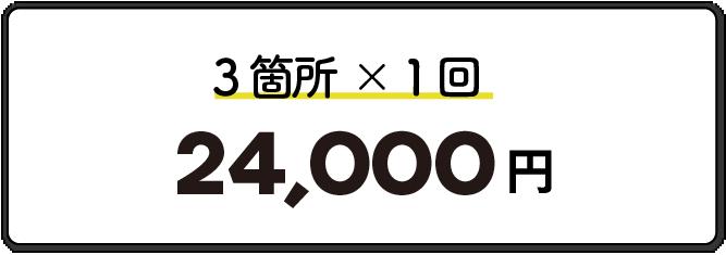 3箇所1回24,000円