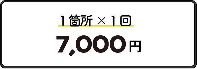 1箇所1回7,000円