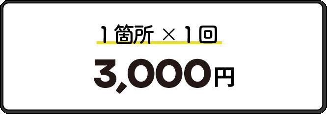 1箇所1回3000円