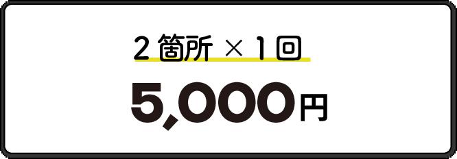2箇所1回5000円