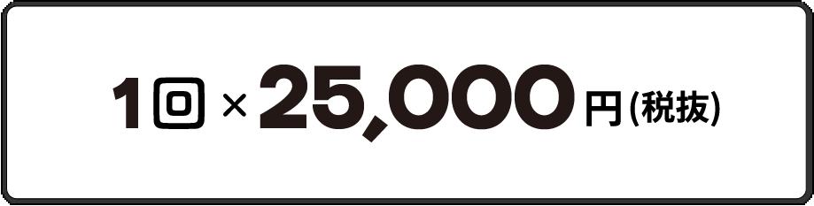 1回25,000円
