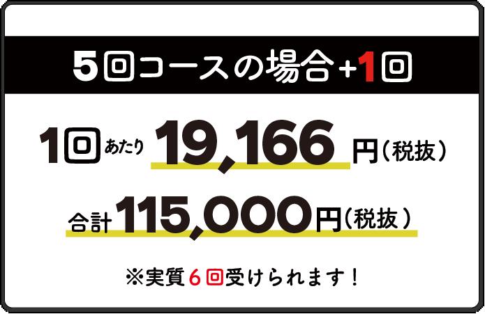 5回コース1回19,196円