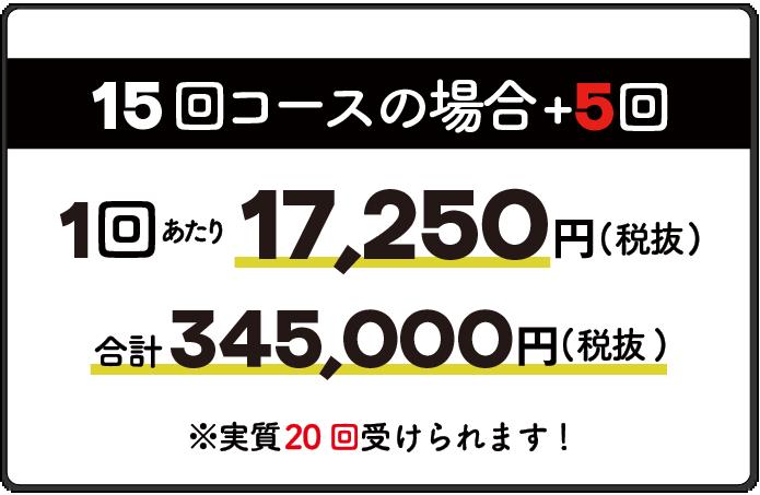 15回コース1回17,250円